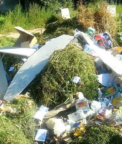 Платить за вывоз мусора – обязательно!