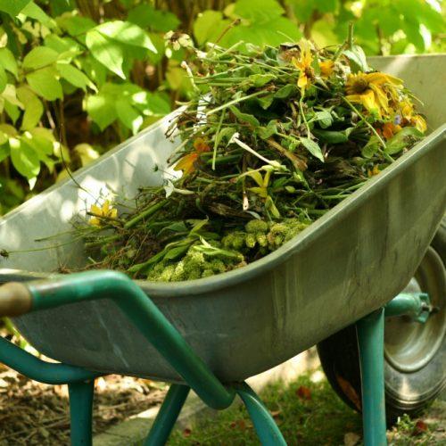 Расценки по сбору и вывозу сезонных отходов с придомовых территорий и приусадебных участков