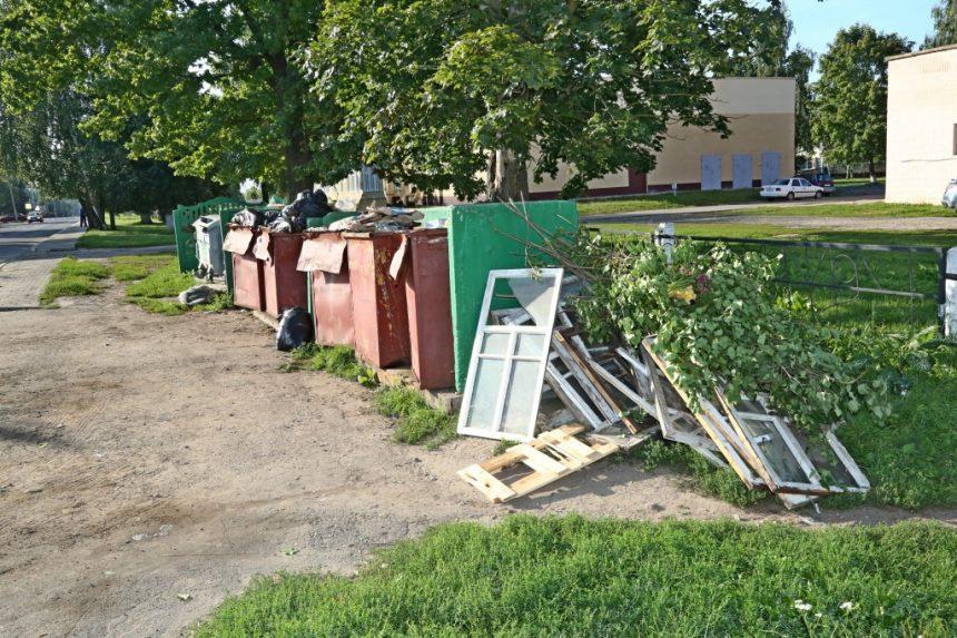 Площадки для сбора мусора в Шклове превращаются в склады строительных и растительных отходов. Что делать?
