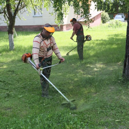 Жилкомхоз регулярно ведет покос растительности в Шклове