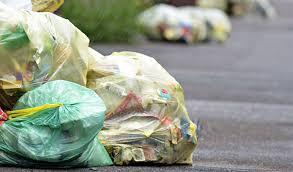 График вывоза мусора по г. Шклову, Александрийскому, Словенскому сельсоветам